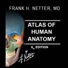 اطلس آناتومي نتر - ويرايش ششم